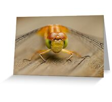Who Will Blink First? Greeting Card