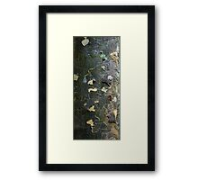 Textures - Tree bark, Mt Mee Framed Print