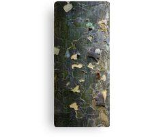 Textures - Tree bark, Mt Mee Canvas Print