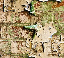 Textures - Green and white peeling paint by Jordan Miscamble