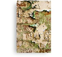 Textures - Green and white peeling paint Canvas Print