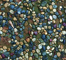 Textures - Path with coloured pebbles and mould by Jordan Miscamble