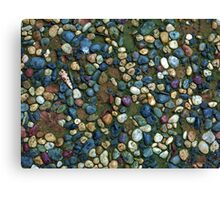 Textures - Path with coloured pebbles and mould Canvas Print