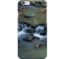 Cascade Twins iPhone Case/Skin