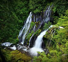 Panther Creek Falls I by Tula Top