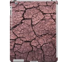 Bone dry in the outback iPad Case/Skin