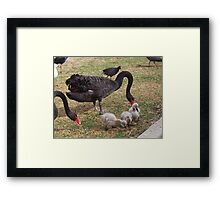 And then there were three ---- Unfortunately Framed Print