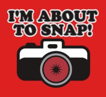 About to Snap Again by Stephen Mitchell