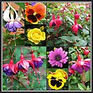 Dancing Fuchsia Belles Collage by BlueMoonRose