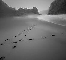 Black Sand - Whatipu Beach by Anthony Surace