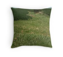 tree in the middle of fields Throw Pillow