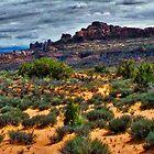 Desert Panorama by Brent Sisson