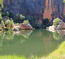 reflections on lennard river, windjana gorge  by nicole makarenco
