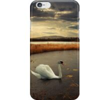 Lonely Lake iPhone Case/Skin