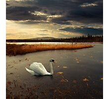 Lonely Lake Photographic Print