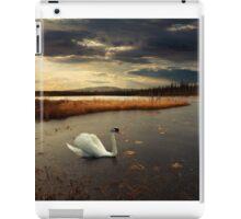 Lonely Lake iPad Case/Skin