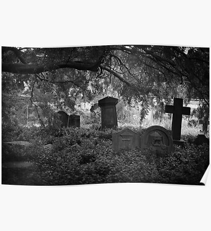 Old Forgotten Cemetery Graves Poster