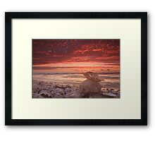 Clam shell sunset, Quobba Framed Print