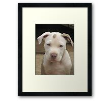 My Name Is Laurie Framed Print