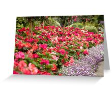 sea of pinks Greeting Card