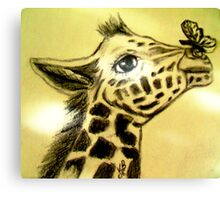 Baby Giraffe with Butterfly Canvas Print