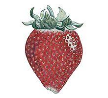 strawberry art Photographic Print