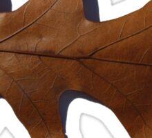 Copper Oak Leaf Sticker