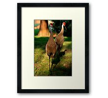 over weight and getting lazy Framed Print