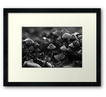 Mushroom army Framed Print