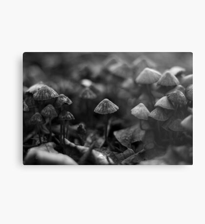 Mushroom army Metal Print