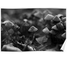 Mushroom army Poster
