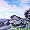 Hound Tor, Dartmoor by Barnaby Edwards