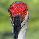 You have such beatiful eyes! by jozi1