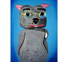 Binky the Wombat King Photographic Print