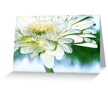 Fresh greens, butter and cream Greeting Card