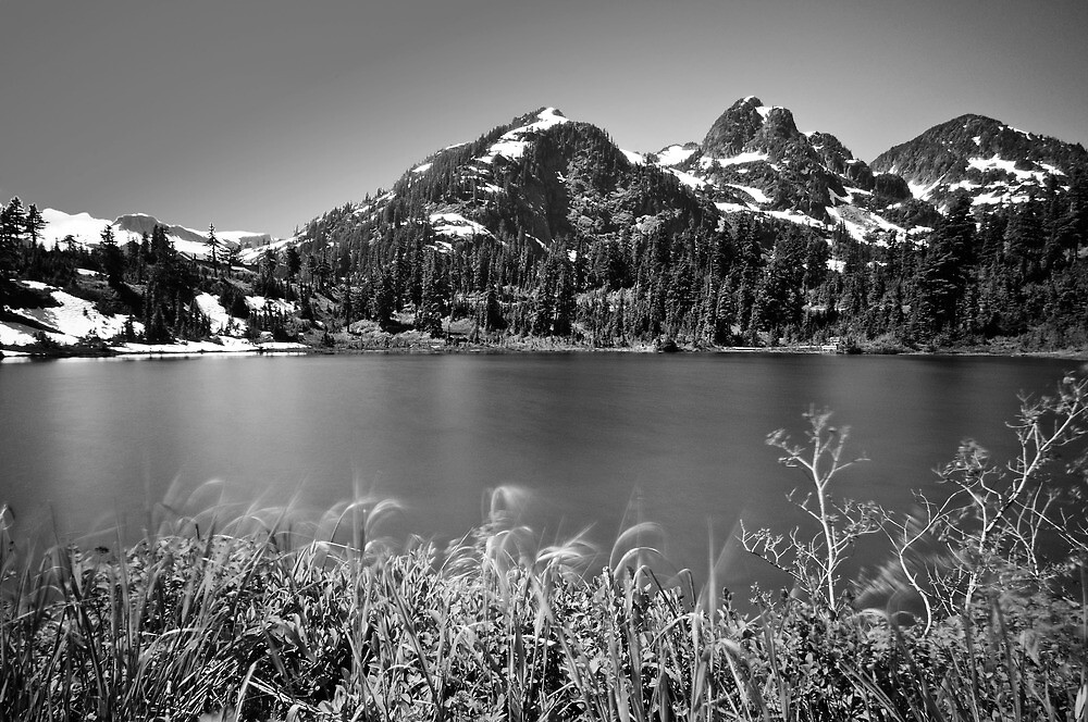 Picture Lake, Mount Baker Wilderness by Dan Mihai