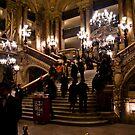 Paris Opera House by David Preston