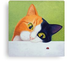 Cat with Ladybird Canvas Print