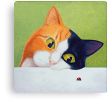 Cat with Ladybird Canvas Print