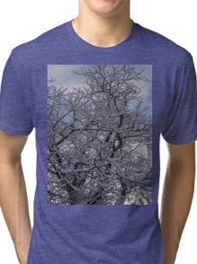 Snowy Black Walnut Tree Tri-blend T-Shirt