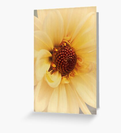 Because She's Worth It... Greeting Card