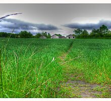 Path by Day by AmandaJanePhoto