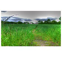 Path by Day Photographic Print