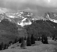 Colorado Pass by Lucinda Walter