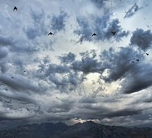 Threatening Sky by Barbara Manis