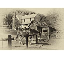 Blue Ridge Country Photographic Print