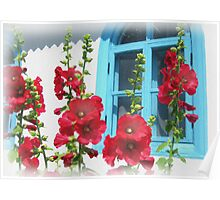 Colors of the rural old home Poster