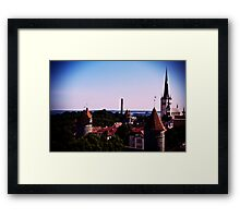 View From Toompea Framed Print