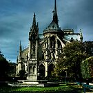 Notre Dame by David Preston