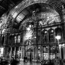 Antwerp Train Station by David Preston